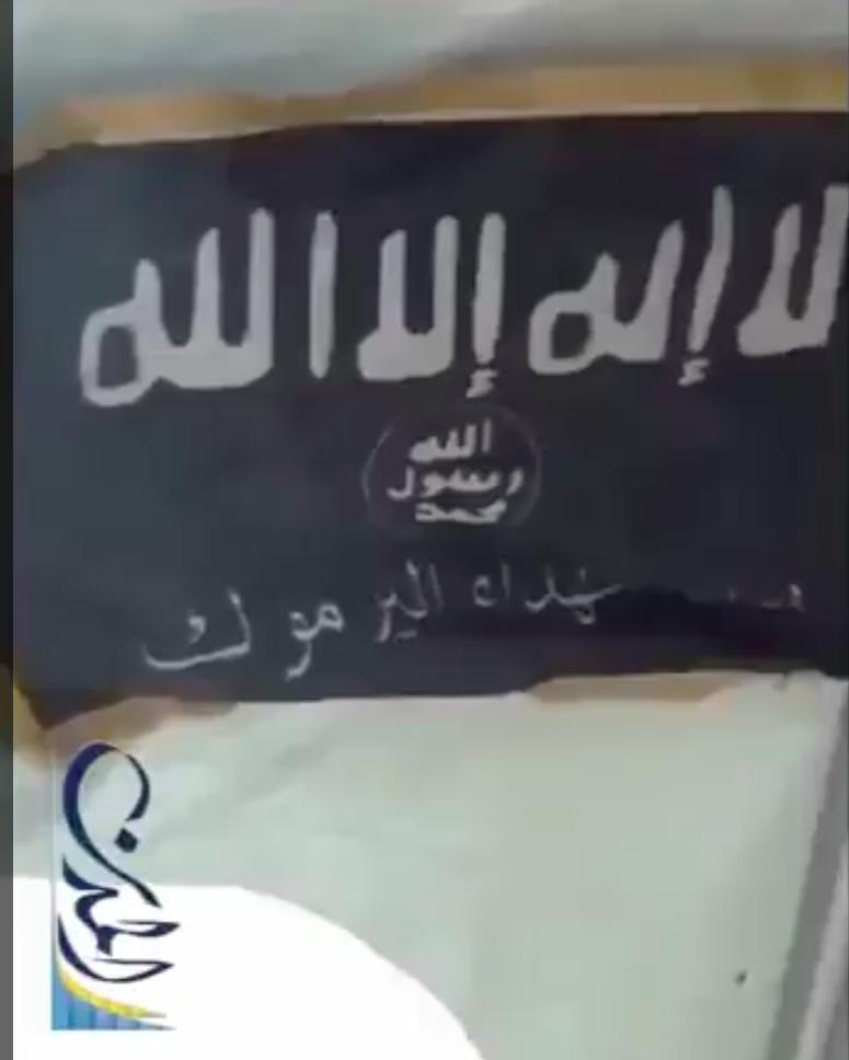 8 variante drapeau EI